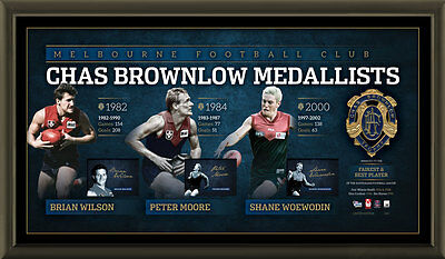 AU475 • Buy Melbourne Signed Afl Official Brownlow Lithograph Framed Aflpa Jim Stynes Moore