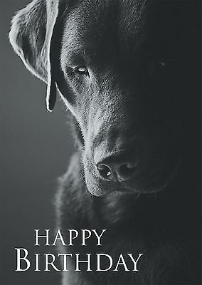 Black & White Birthday Card Black Labrador Dog Perfect - Dad Brother Son Uncle  • 2.95£