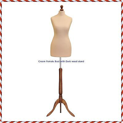 Female Size 8/10  Tailors Bust Mannequin Cream Dummy  Fashion  Retail Display • 29.95£