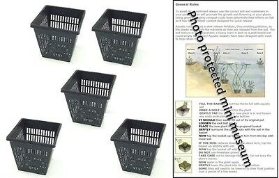 5 X 11cm Square Plastic Aquatic Pots Baskets For Water Plants And Pond & Guide • 7.65£
