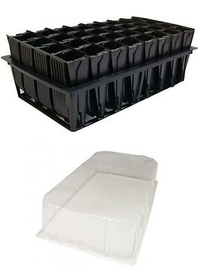 Deep Root Trainer Trainers Seed Tray With Lid 32 Cells Rootrainer Roottrainer • 11.99£