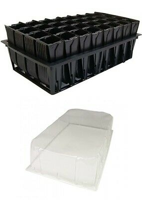 2 X Deep Root Trainer Trainers Seed Tray With Lid 32 Cell Rootrainer Roottrainer • 20.99£