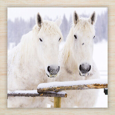 £8.99 • Buy Christmas Cards & Packs - White Horses In Winter Snow - Fast FREEPOST