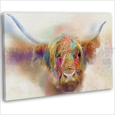 £16.99 • Buy Highland Cow Colourful Watercolour Canvas Print Framed Wall Art Picture .2