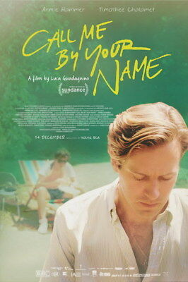 AU6.99 • Buy 006 Call Me By Your Name - Romance 2017 USA Movie 14 X21  Poster