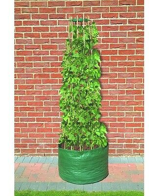 Reusable Pea Runner Bean Tomato Grow Bag Planter Plant Pot Support Frame #N418 • 111.95£