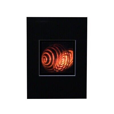 £10.78 • Buy COIL 3D Hologram Picture MATTED, Collectible Embossed Type Animated Stereogram