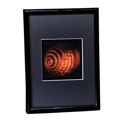 £21.59 • Buy COIL 3D Hologram Picture FRAMED, Collectible Embossed Type Animated Stereogram