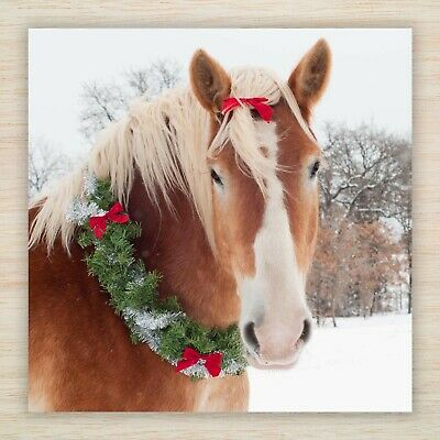 £8.99 • Buy Horse Christmas Blank Cards & Packs - Festive Pony In Snow With Garland FREEPOST