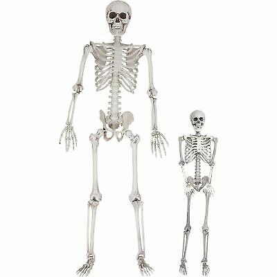 $47.99 • Buy 3/5.6ft Skeleton Halloween Posable Full Life Size Party House Hunted Prop Decor