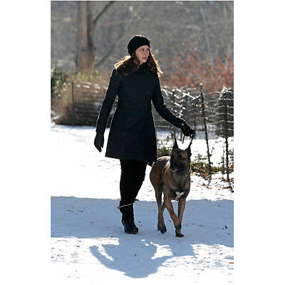 $ CDN10.92 • Buy Person Of Interest Amy Acker As Root Walking Dog In Snow 8 X 10 Inch Photo