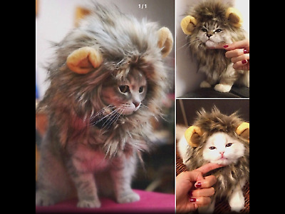 Furry Pet Hat Costume Lion Mane Wig For Cat Halloween Dress Up With Ears Ty • 5.75£