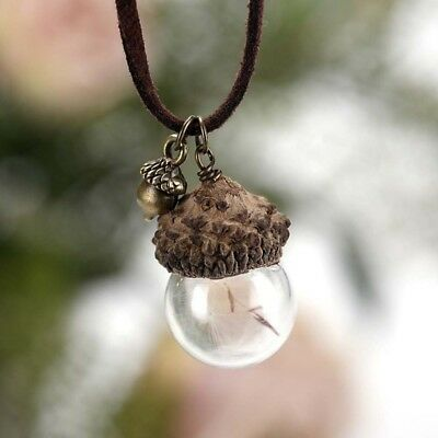 Pineal Acorn Shell Dandelion Glass Pendant Chain Necklace Charm Jewelry Gift • 1.73$