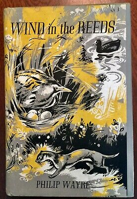 £17 • Buy ' WIND IN THE REEDS ' By Philip WAYRE : 1965 : Quality Book Club Edition.