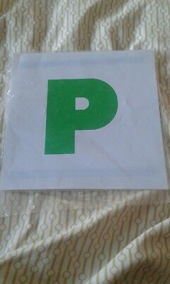 Magnetic P Plates • 0.99£