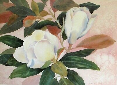 $15.95 • Buy Magnolia Magic I Limited Edition Print Floral Flowers Pink Closeout Sale Price