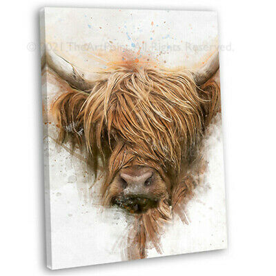 £16.99 • Buy Highland Cow Portrait Watercolour Canvas Print Framed Wall Art Picture