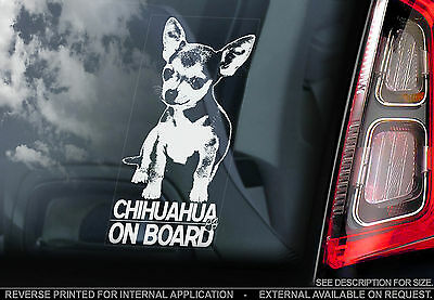 £3.65 • Buy Chihuahua - Car Window Sticker - Dog On Board Sign Art Gift Short Haired - TYP1