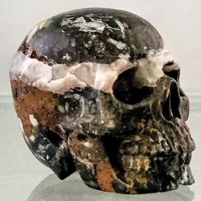 $49.99 • Buy Eye Catching 2  Pietersite Crystal Skull Meditation Carving Intuition