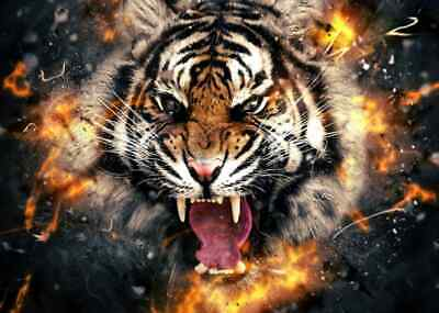 Roaring Tiger Face Poster Print Vinyl Wall Sticker Various Sizes • 14.95£