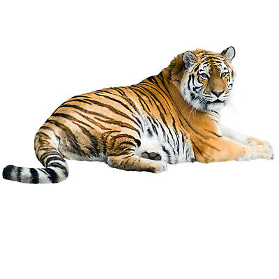 £3.99 • Buy Tiger Wild Animals Childrens Wall Stickers Decal Transfer Kids 4 Sizes