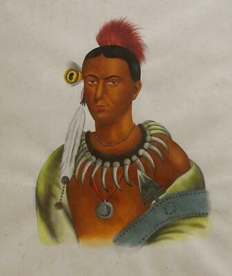 $495 • Buy Ma-Has-Kah, Ioway Chief -19th C Native American Portrait After Charles Bird King
