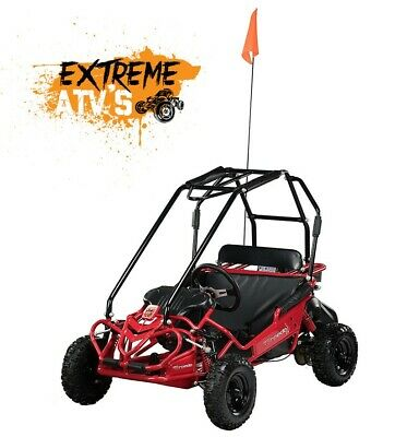Hammerhead Torpedo 136cc Kids Off Road Off-Road Buggy Buggie Outdoor Toy • 949£