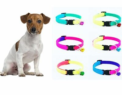 Small Dog/Puppy Adjustable Luminous, Rainbow Coloured Safety Collar With Bell • 2.95£