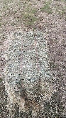 £4 • Buy SSOLD OUT FOR 2020 - Orders For 2021!!- Meadow Hay Bales Round And Conventional