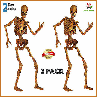 $27.60 • Buy 6 Ft Life Size Jointed Skeleton Halloween Haunted House Decoration Props 2 Pack