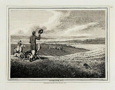 OLD ANTIQUE PRINT HARE COURSING By SAMUEL HOWITT C1812 ENGRAVING GREYHOUNDS • 29.99£