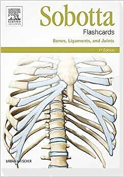 BEST Sobotta Flashcards Bones Ligaments And Joints Bones Ligaments And Joints 1 • 19£