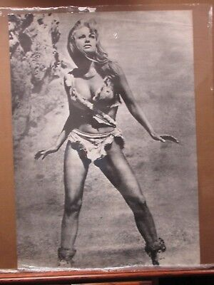 $ CDN139 • Buy Rachel Welch Hot Girl  Black White Vintage Poster 1970's 1 Mil Years BC Inv#1664
