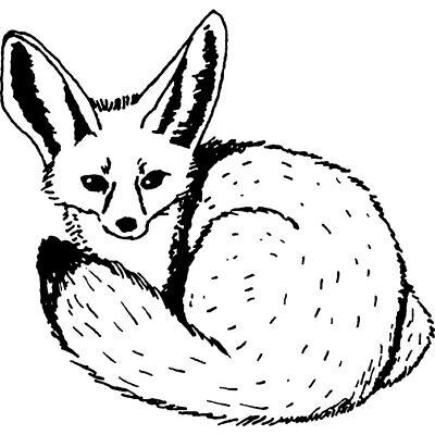 'Fennec Fox' Rubber Stamp (RS016001) • 5.99£