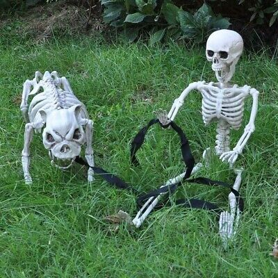 $31.99 • Buy 3-Ft Realistic Hanging Human Skeleton W/ Move-able Joints Halloween Decor