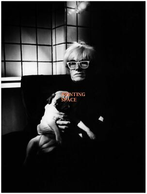 $20 • Buy ANDY WARHOL Hollywood Celebrity Poster TV Movie Poster 24 In By 36 In F