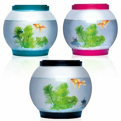 5 Litre Glass Fish Bowl LED Light Aquarium Goldfish Betta Tank Accessories • 14.79£