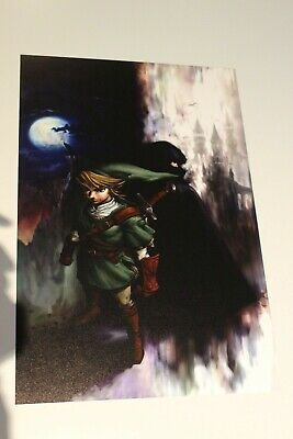 $10.99 • Buy The Legend Of Zelda Twilight Princess Poster 12x18