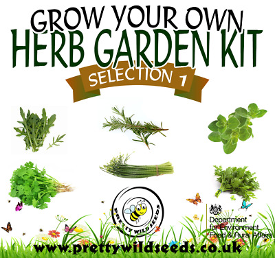 £7.99 • Buy Grow Your Own Herb Garden Kit Selection 1 Perfect For Kids & Beginners