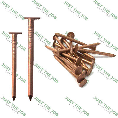 COPPER CLOUT NAILS ~ Roofing Slate, Tree Stump Killers 25,30,35,38,50mm Shingles • 2.09£