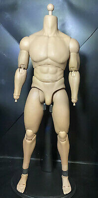 $ CDN119 • Buy Hot Toys 1/6 Ttm20 Truetype Basic Series Advanced Muscular Body Action Figure