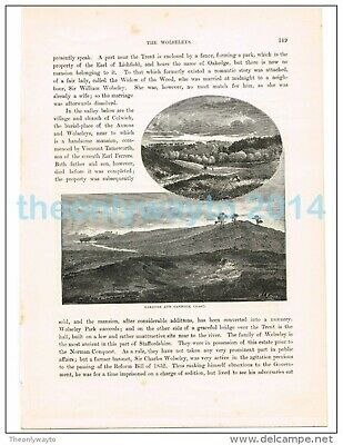 Oakedge And Cannock Chase, Staffs, England, Book Illustration, 1882 • 8.97£