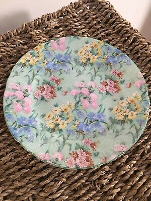 Shelley Melody Jug And Plate Green & Pink Painted Floral Porcelain • 40£