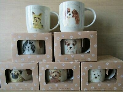 NEW Buy 1 OR Set Of 6 Assorted Best Of Breed Descriptive Dog New Bone China Mugs • 7.89£