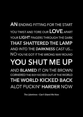 £11.99 • Buy The Libertines - Can't Stand Me Now - Black Song Lyric Art Poster - A4