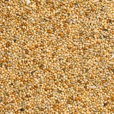 Budgie Food, Perfect Mix Of Red And White Millet With Canary Seed, Budgie Seed • 8.45£