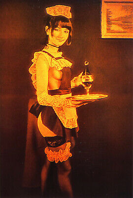 £14.42 • Buy 4x6  10x15cm Sexy Maid - True 3D Laser Hologram Picture Matted