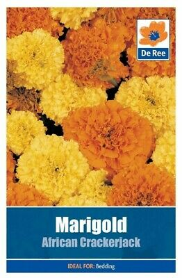 Marigold African Crackerjack Seeds Sealed Pack Yellow Orange Flower Bedding UK • 3.20£
