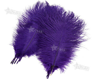 $7.87 • Buy Large Ostrich Feathers Plume 10 -12  Long Wedding Party Costume Craft