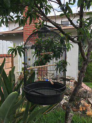 $54.95 • Buy HOOK ROUND DOME BIRD FLIGHT CAGE For Cockatiel Lovebird Finch Canary Aviaries